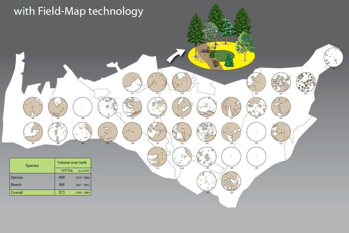 Inventario forestal con Field-Map