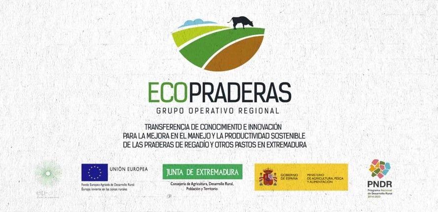 Grupo Operativo Ecopraderas