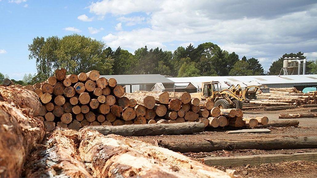 Nautiz X2 especializada en inventarios forestales