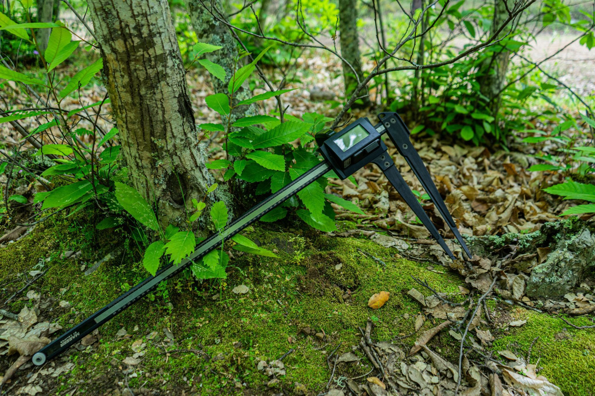 Field-Map Forest Collector, alquiler de equipos Field-Map, alquiler de equipos de medición